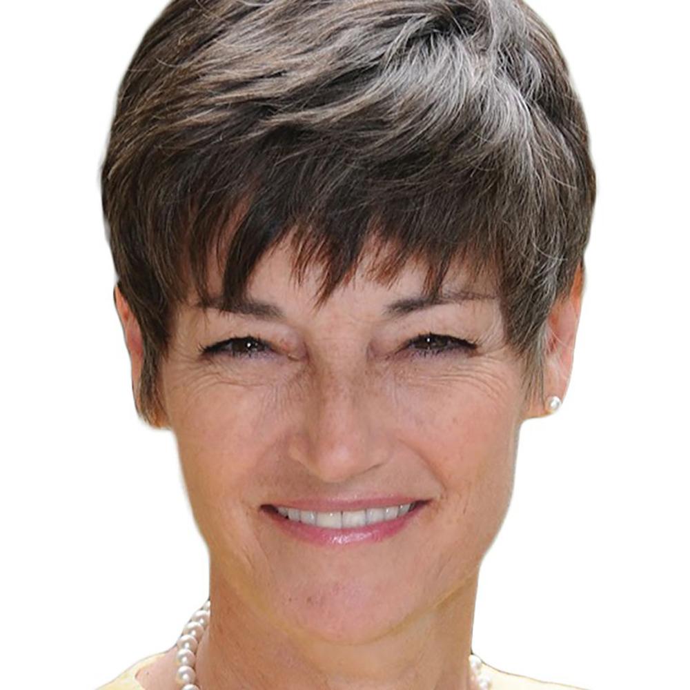 Texas Senator Donna Campbell
