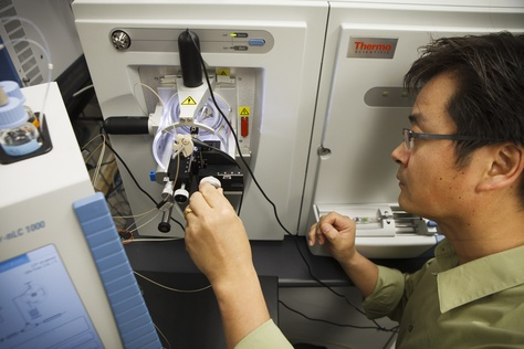 Associate Professor Sung Jung uses mass spectrometers to measure protein in cancer cells at Baylor College of Medicine in Houston Monday, February 11, 2013. Baylor College of Medicine received a $6 million CPRIT grant to purchase advanced laboratory infrastructure and pay researchers to measure all of the metabolites and proteins in cancer cells at the same time.