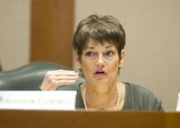 Sen. Donna Campbell, R-New Braunfels, in Senate Education Committee on April 9, 2013.