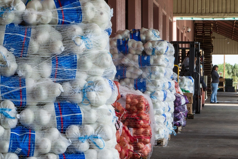 Stacks of fresh vegetables from Mexico await loading into north-bound trucks at the McAllen Produce Terminal.