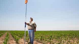 A device that transmits information on soil moisture in a cornfield belonging to David Ford (standing) a farmer near the Texas Panhandle town of Dumas. He is participating in a water-saving demonstration project.