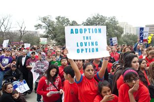 Thousands of abortion opponents attended the Texas Rally for Life at the Capitol on Jan. 26, 2013, where speakers included Gov. Rick Perry, Lt. Gov. David Dewhurst and Houston Sen. Dan Patrick.