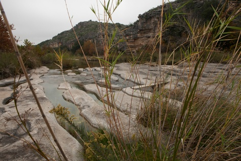 Three biological regions converge on the Dolan Falls Preserve: the Edwards Plateau, Chihuahuan Desert and Rio Grande Plain brushland. As a result, many distinct ecosystems overlap to create rich biodiversity.
