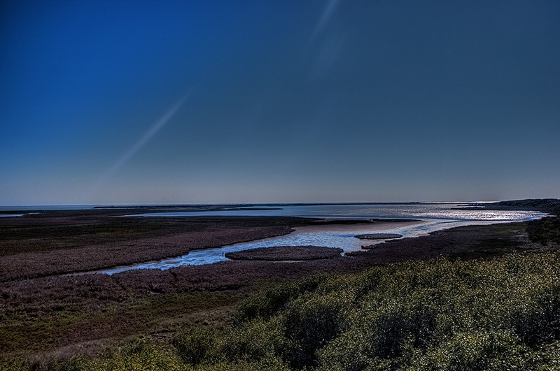 San Antonio Bay is home to the Aransas National Wildlife Refuge, where endangered whooping cranes live. The water that flows into the bay from the San Antonio River is vital to the species' survival.