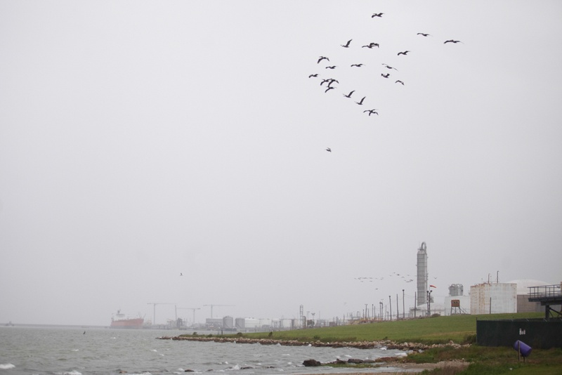 Galveston Bay near the Texas City Dike and the Valero Refinery in Texas City, Wednesday March 26, 2014.