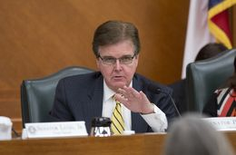 Sen. Dan Patrick R-Houston during am education committee hearing on April 14th, 2014