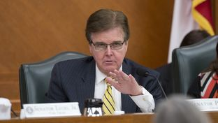 Sen. Dan Patrick R-Houston during am education committee hearing on April 14th, 2014