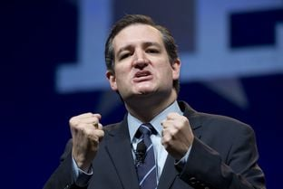 Sen. Ted Cruz of Texas rallies the Republican delegates at the Republican Convention in Fort Worth June 6, 2014.