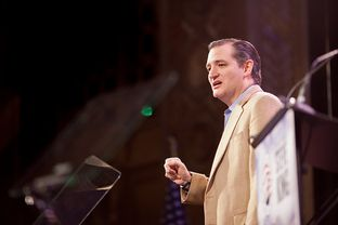 U.S. Sen Ted Cruz gives a speech at the Iowa Freedom Summit in Des Moines, Iowa, on Jan. 24, 2015.