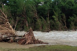 Flooding along the Blanco River in Wimberley in May 2015.