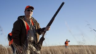 U.S. Sen. Ted Cruz, R-Texas, at U.S. Rep. Steve King's annual pheasant hunt at the Hole N' the Wall Lodge in Akron, Iowa, on Saturday, Oct. 31, 2015.