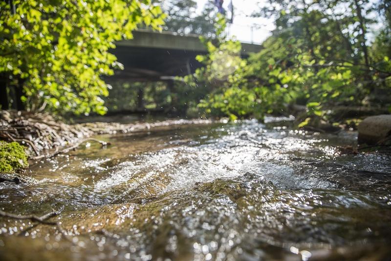 Cypress Creek in downtown Wimberley.