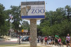 The San Antonio Zoo is one of several across Texas struggling to navigate new gun laws in the state.