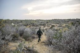 A Border Patrol Agent makes his way through harsh terrain along the Rio Grande River in Starr County, Texas.