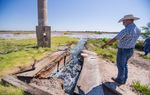 Ty Edwards, assistant general manager of the Middle Pecos Groundwater Conservation District, points to brackish water flowing from one of several flowing abandoned wells— originally drilled for oil, but later used for irrigation — that no state agency plans to plug.