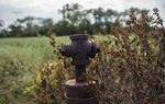 The head of an abandoned well sprouts from the ground on Stuart Carter's cattle ranch in Luling. For years, he has pushed the operator who took over a mineral lease to plug the well. The operator refuses to do so, saying it's not his responsibility.