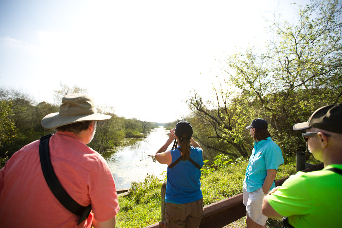 A group of Wisconsinites on the lookout for birds and other wildlife at Resaca de la Palma State Park and World Birding Center in the Rio Grande Valley. The region is one of the preeminent birding and ecotourism locales in the Unites States, drawing some 685,000 visitors last year.