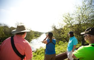 Dana Sanft spots a kingfisher at Resaca de la Palma, a World Birding Center Texas state park, with her husband and two friends from Wisconsin. Birding tourism, a huge industry in the Rio Grande Valley, could be affected by negative environmental impacts of the border wall.