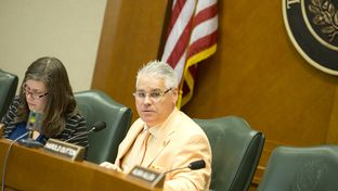 House Committee on Public Education Chairman Dan Huberty at a hearing on March 21, 2017.