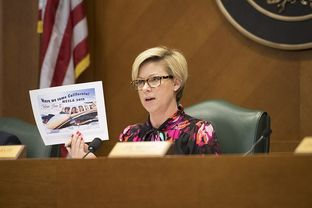 State Rep. Sarah Davis, R-West University Place, chairwoman of theCommittee on General Investigating and Ethics,holds up a TABC flyer at a hearing on April 13, 2017.
