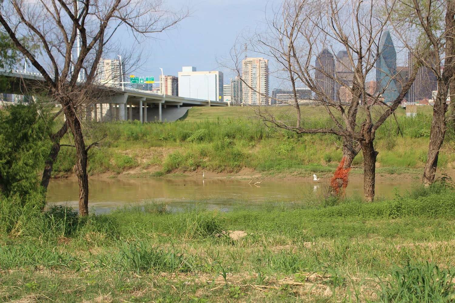 Dallas has long planned to turn the Trinity River floodplain near downtown into a massive urban park. But for years, plans for a riverside toll road cast a shadow of controversy over the project.