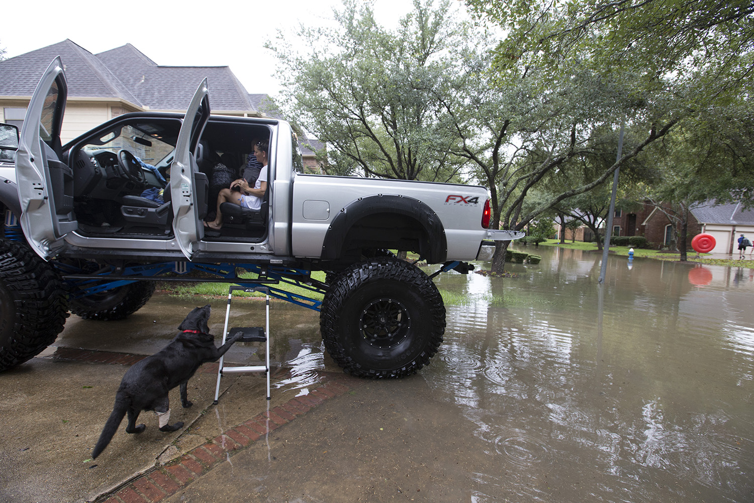 A dog waits to get loaded with his family into Chris Ginter's truck in Houston on Tuesday, Aug 29, 2017. Ginter is helping evacuate people from their flooded neighborhood near the Buffalo Bayou.
