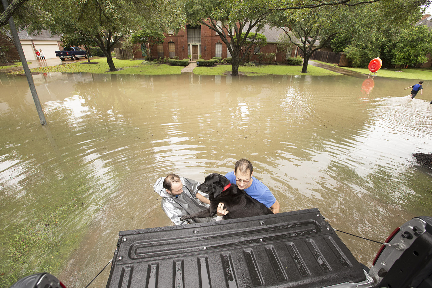 Chris Ginter, left, helps Matt McLean and his dog into his truck on Tuesday, Aug. 29, 2017. Ginter is volunteering to evacuate people from their flooded neighborhood near Buffalo Bayou.