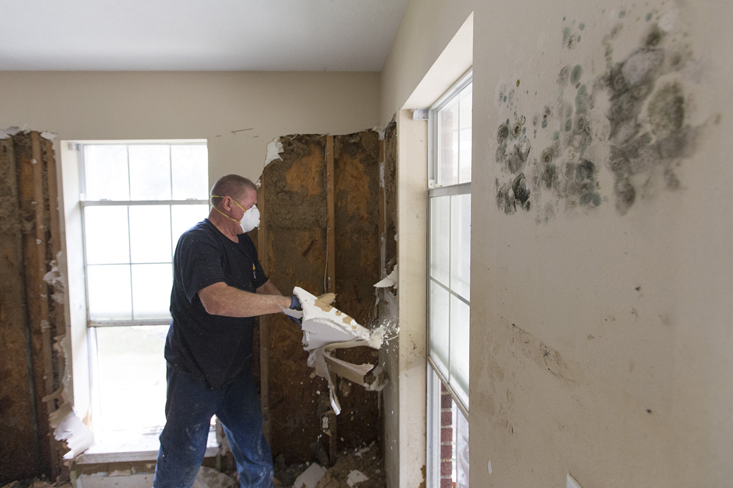 Robert McLaughlin removing sheetrock from a flooded home with mold growing on the walls in Rose City.