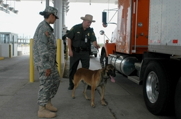 A U.S. Army soldier of the Texas Army National Guard and U.S. Border Patrol Agent Chad Wamsley observe as Ricky I, a Belgian Malinois detection dog, checks a tractor-trailer for indications of drugs or concealed people at the U.S. Border Patrol's Interstate 35 checkpoint north of Laredo, Texas, on July 14, 2006.