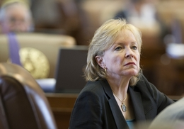 State Rep. Myra Crownover, R-Lake Dallas, looks at the voting board after she was named an HB1 House conferee on May 6, 2011.