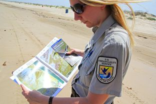 Jennifer White, a public relations liaison for the U.S. Fish and Wildlife Service, looks over a map of Boca Chica Beach in South Texas. The map shows the protected area's privately owned parcels; one could become a SpaceX launchpad site.