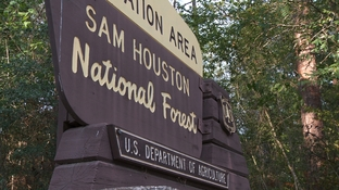 Melissa Trotter's body was found by hunters in the Sam Houston National Forest on Jan. 2, 1999, 25 days after she disappeared from a nearby college campus.