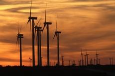 The Buffalo Gap Wind Farm in Merkel.