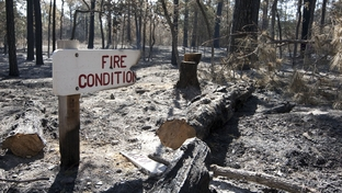 An almost completely burned sign stands amid rubble at Bastrop State Park on Sept. 13, 2011.