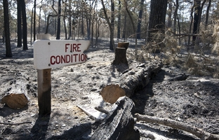 As the anniversary of last year's Central Texas wildfires draws near, KUT News and StateImpact Texas revisit what led to the worst fires in state history, and how the state has changed since last summer.