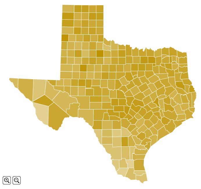 Texas Turnout