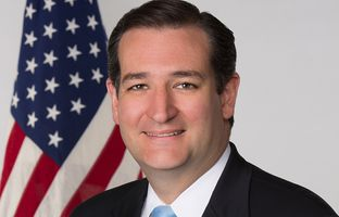 U.S. Sen. Ted Cruz on Wednesday gave his first formal speech on the Senate floor, urging his colleagues to support an amendment to defund federal health reform.
